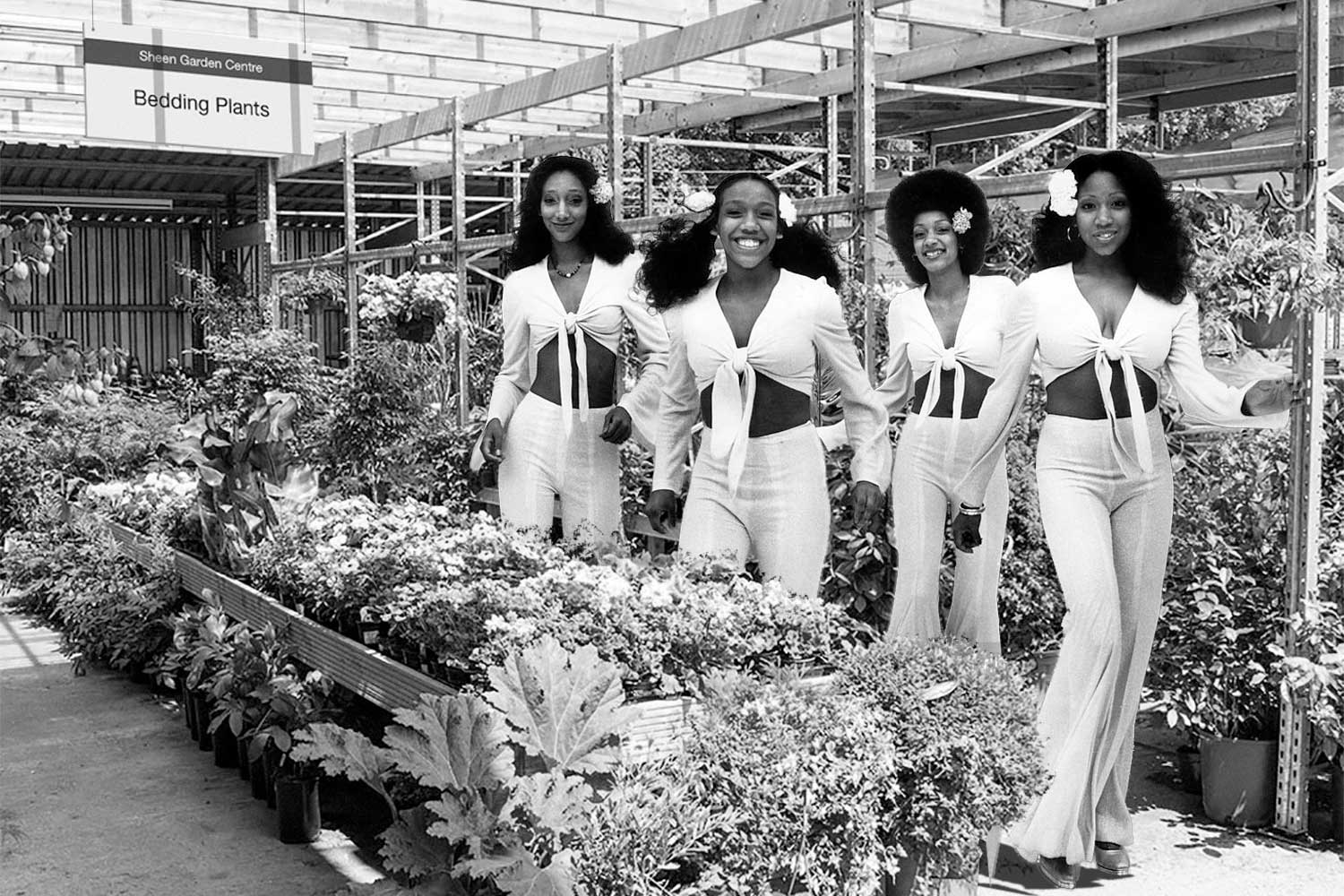 Sister-Sledge-East-Sheen-Mortlake-Sheen-Resistance